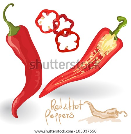 Vector red hot chili peppers  on white.