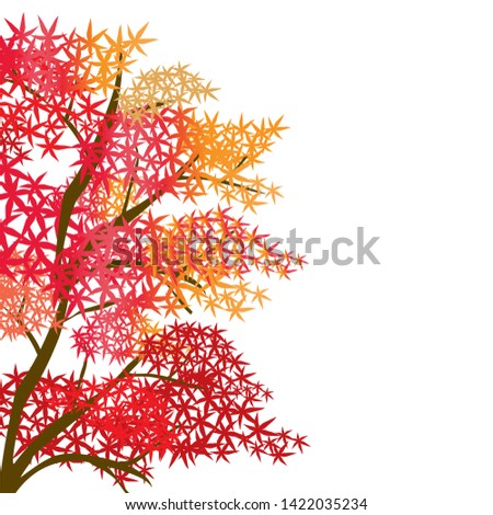 vector red maple tree  red leaf