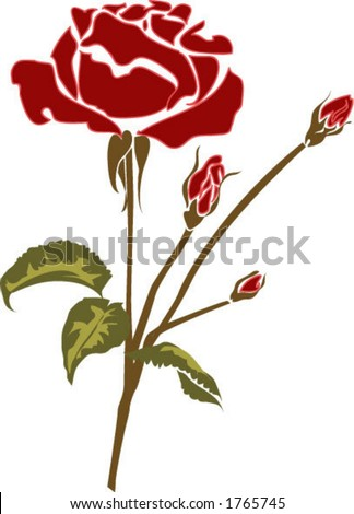 rose flower sketch. Red Rose Flower Bush