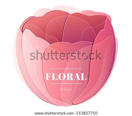vector red tulip flower head