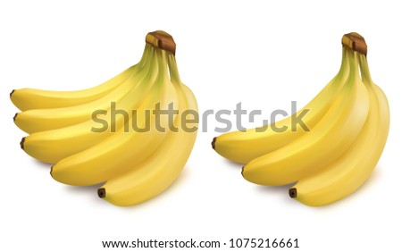 Vector ripe yellow bananas set. Bunches of fresh banana fruits isolated on white background, 3D collection of vector illustrations.
