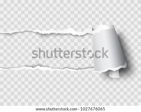 vector ripped paper, layered Stock photo ©