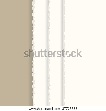 Vector - Ripped paper sheet background with copy space for text