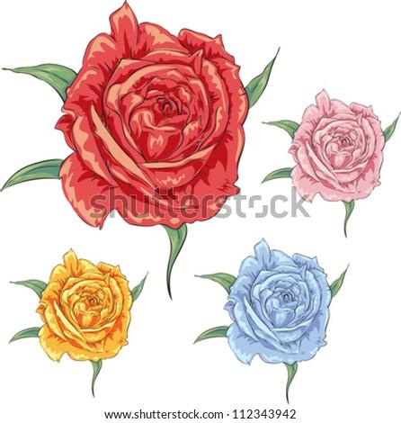 Vector rose in differenet colours. Art design elements - stock vector