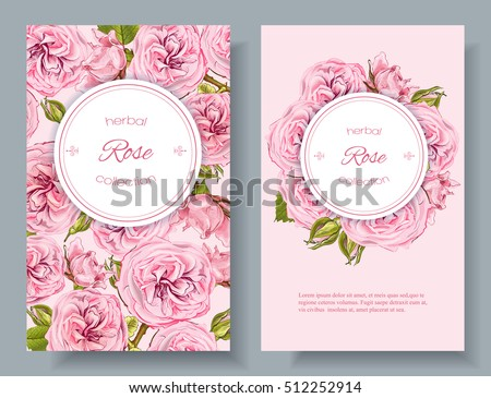 Vector rose natural cosmetic vertical banners on pink background. Design for cosmetics, make up, beauty salon, natural and organic products, health care products,aromatherapy. With place for text