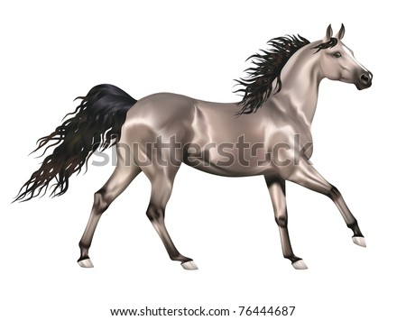 Vector running gray arabian horse isolated on white background