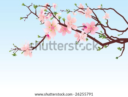 vector sakura or cherry blossoming tree brunch pink spring illustration on the blue sky background - stock vector