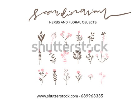 Vector Scandinavian Herbs and Flowers Set, Simple Hand Drawn Nature Objects, Wedding Anniversary Cards, Creative Floral Objects