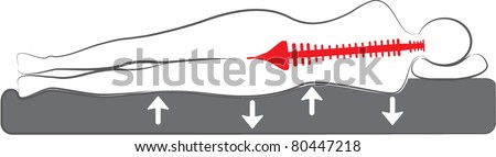 vector schematic drawing of the orthopedic bed or mattress