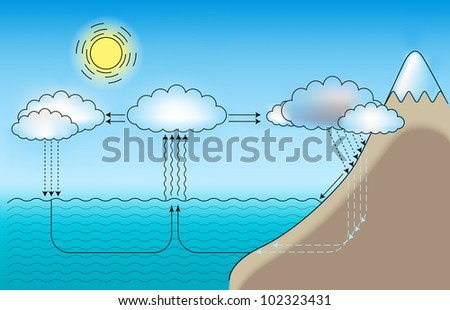 Vector scheme for small and large water cycle
