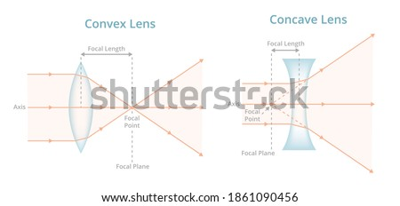 Vector scientific illustration. Convex or converging lens, concave or diverging lens, light rays passing through lens. Physics, optics, photography. Positive, negative labeled lens isolated on white.