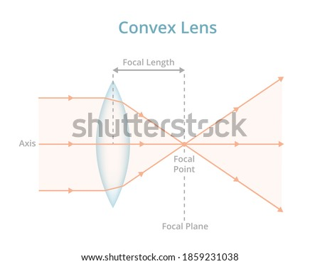 Vector scientific illustration of a convex lens or converging lens isolated on white. Physics, optics, photography. Labeled convex lens converges the light rays passing through the lens to a point.