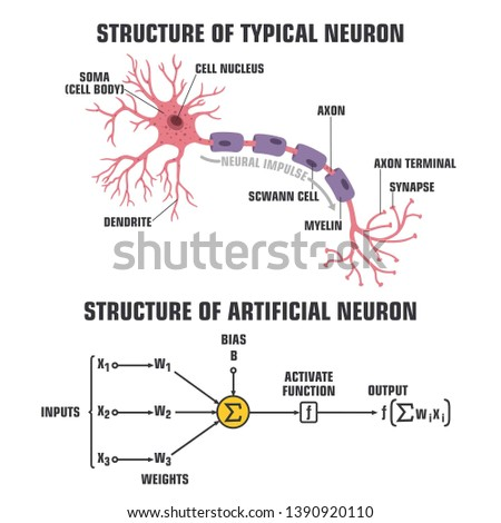 Vector scientific tech icon structure of human neuron and neuron of artificial intelligence. Description of the anatomy of the neuron of the brain and computer artificial intelligence.