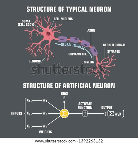 Vector scientific tech icon structure of human neuron and neuron of artificial intelligence. Description of the anatomy of the neuron of the brain and computer artificial intelligence. Illustration of