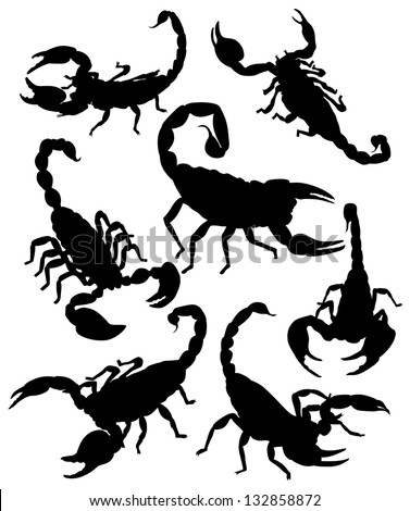 vector scorpion silhouette