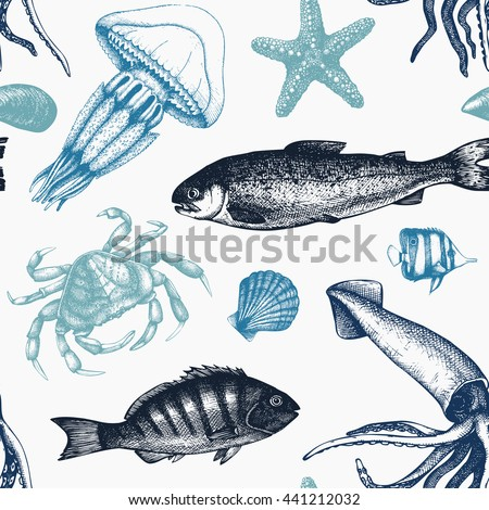 vector sea life background