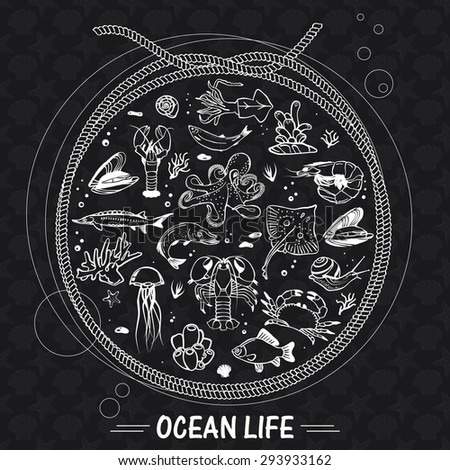 Vector sea world background. Mediterranean design. Underwater wildlife icons. Ocean animals - fish, octopus, shrimp, crab, lobster, mussel, shell. Sea background