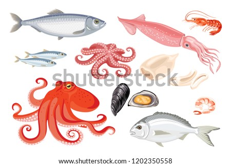 Vector seafood set in flat style isolated on white. Simple icons of squid, octopus, dorado, herring, sardine, shrimp, mussels. Template for magazine, poster, market, menu, web, banner.