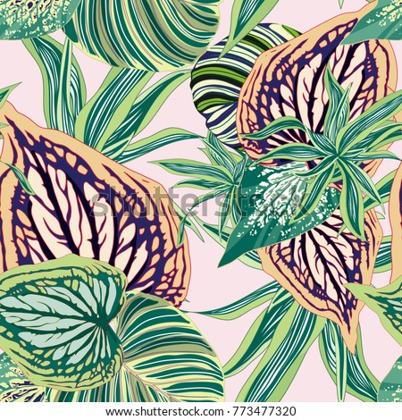 Vector Seamless Botanical Background Tropical Jungle