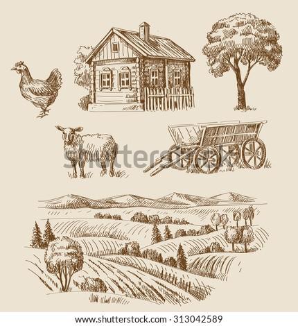 vector seamless farm and