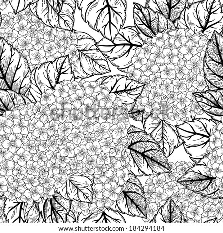 Vector seamless floral pattern with flowers hydrangeas. Black and white background.