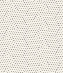 Vector seamless pattern. Modern linear texture. Repeating geometric background. Striped hexagonal weaved grid. Contemporary graphic design. Regular rhythmic print.