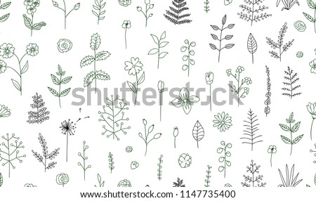 Vector seamless pattern of black and white flowers, herbs, plants. Monochrome  pack of elements for natural design. Cartoon style.  #1147735400