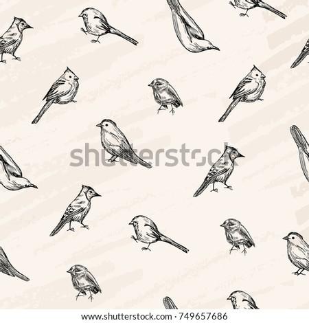 Vector seamless pattern. Vector sketch , pen style drawn birds .