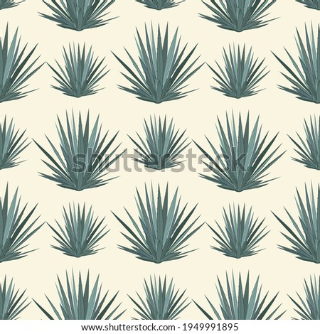 Vector seamless pattern with blue agave. Tequila agave succulent plant background, wallpaper.