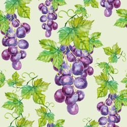 vector seamless pattern with grapes and leaves