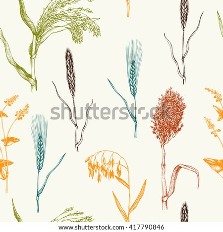 Vector seamless pattern with hand drawn cereal crops sketches. Vintage background with industrial plants illustration. Farm fresh and locally grown organic products illustration. Zdjęcia stock ©