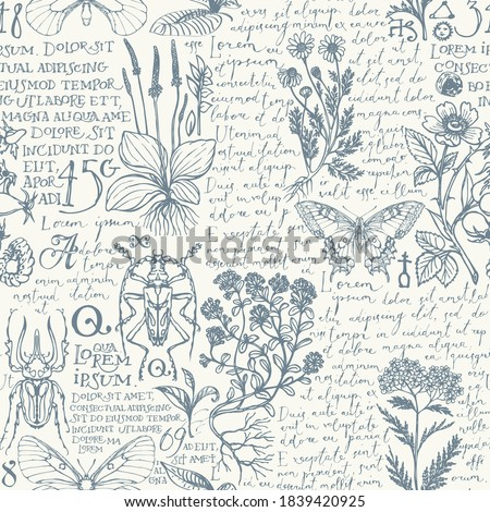 Vector seamless pattern with medicinal herbs, insects and handwritten text Lorem Ipsum. Retro style hand-drawn herbs, beetles, butterflies on an a light background. Wallpaper, wrapping paper, fabric