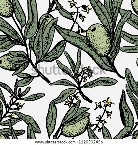 Vector seamless pattern with olive handdrown elements. Floral ornament with olive leaves and branches.