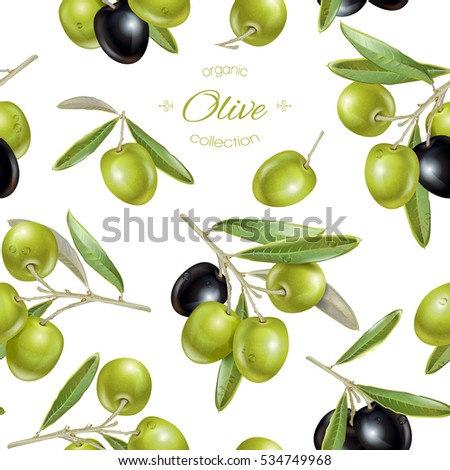 Vector seamless pattern with ripe black and green olives on white. Background design for olive oil, natural cosmetics. Best for wrapping paper.