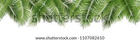 Vector seamless summer palm leaves on white background.