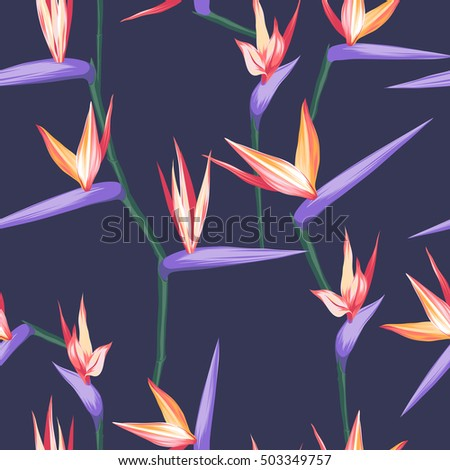 vector seamless tropical bird