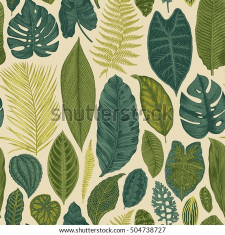 Vector seamless vintage floral pattern. Exotic leaves. Botanical classic illustration.Green