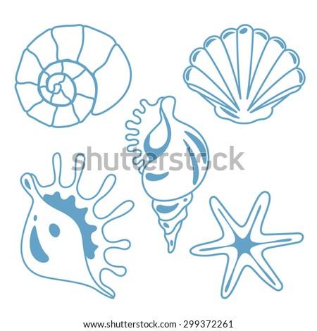 vector seashell and starfish