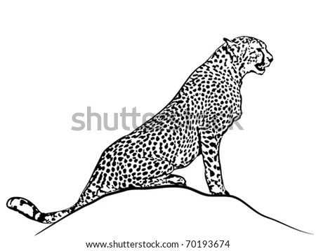 Vector sedentary cheetah.