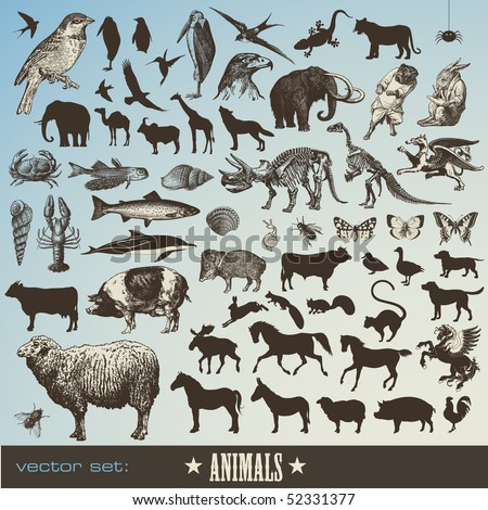 vector set  animals  ...