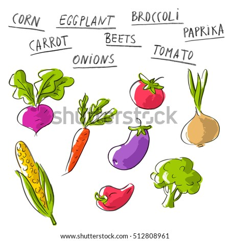 Vector set collection with vegetables and lettering