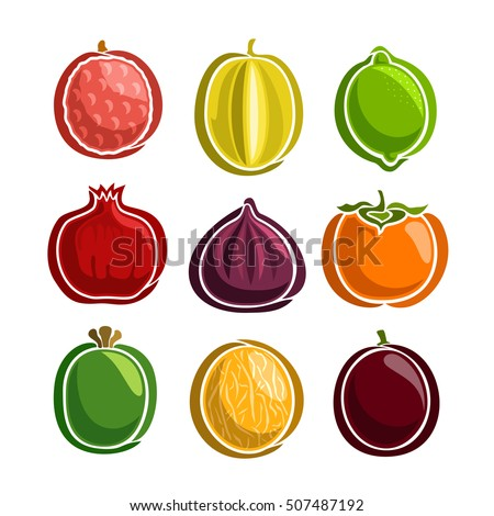 Vector Set colorful Fruits icons: lychee, starfruit, lime, pomegranate, fig, persimmon, feijoa, melon, passion; collection set of abstract simple fruit logo or icon, isolated on white background.