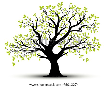 vector set - decorative tree and green leaves with shadow