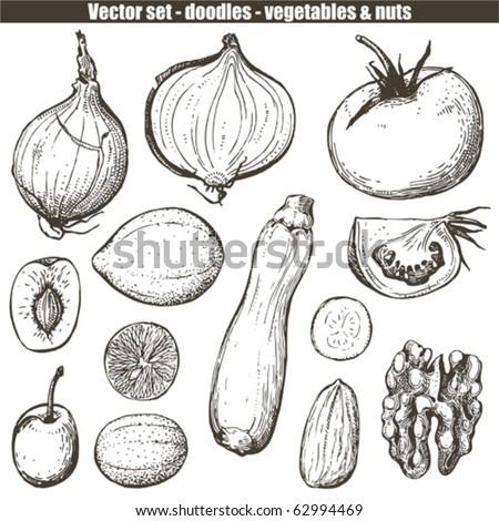 vector set - doodles - vegetables
