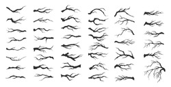 vector set dry tree branches on white background