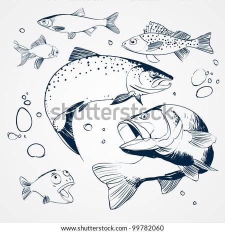 vector set  fish