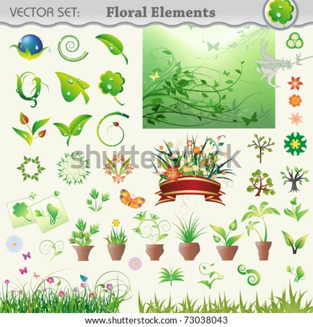 Vector set, floral elements. Collection of useful icons and illustrations to embellish your layout.