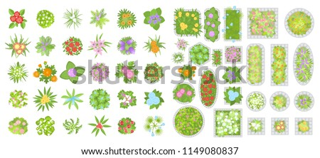 Vector set. Flowers and flower beds. Top view. Collection of different flowers for architectural and landscape design. (View from above) Nature green spaces.