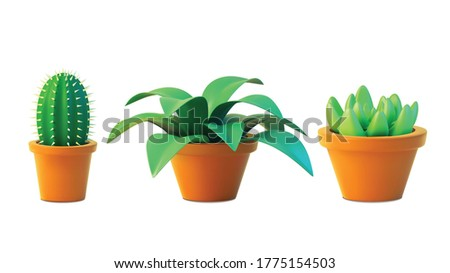 vector set houseplant cactus
