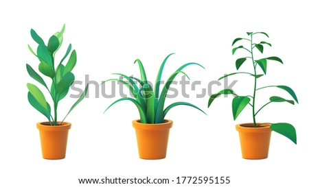 vector set houseplant